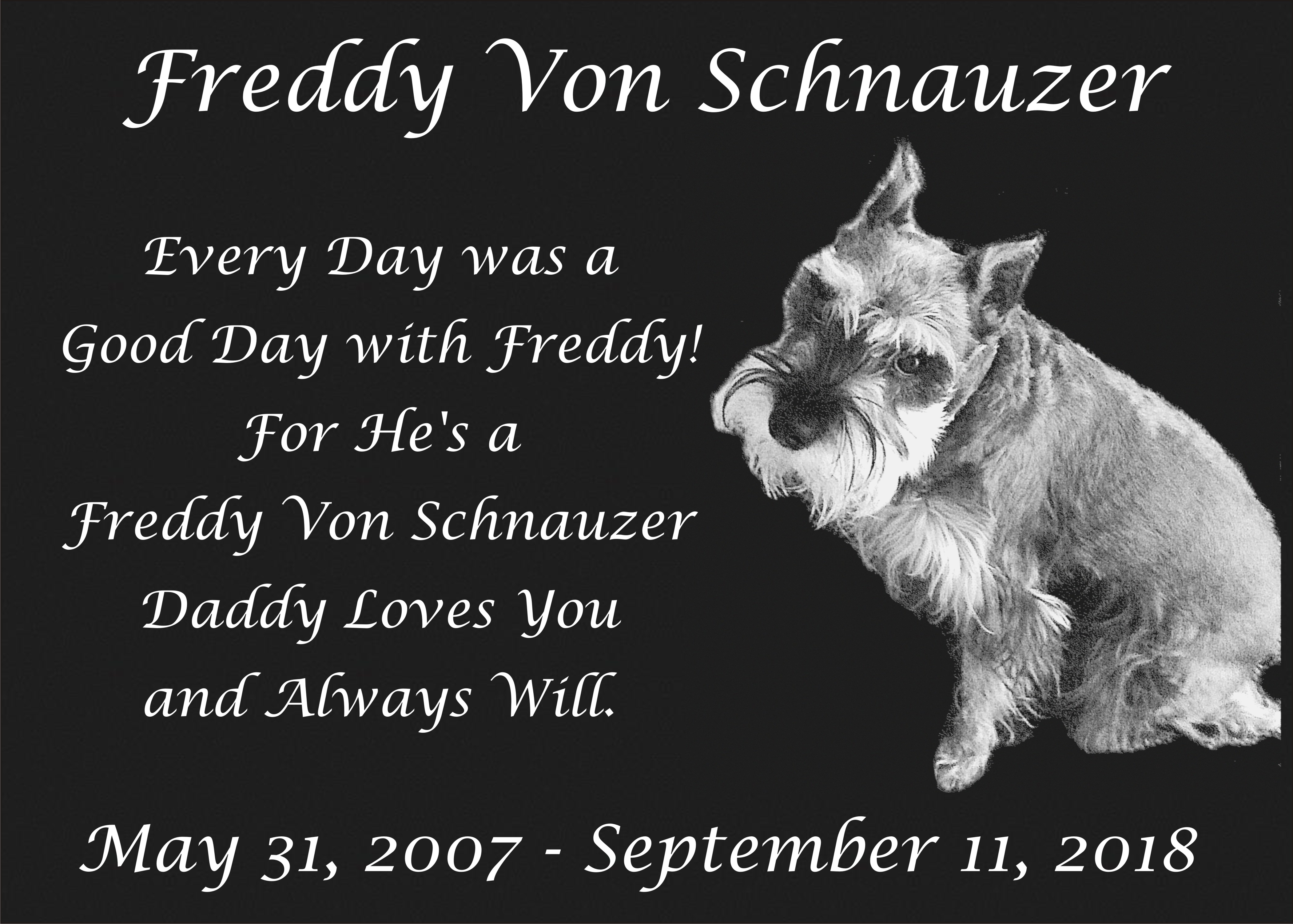 Yesterday a handful of close friends and I buried Freddy Von Schnauzer just  outside my office window. He'll never be too far away.